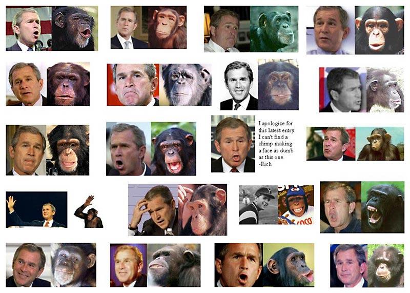 evil_monkey.jpeg